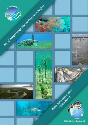 IOSEA turtle report a must-read