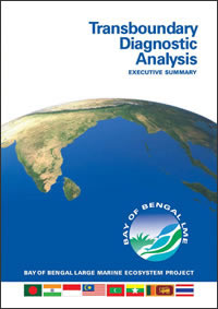 Transboundary Diagnostic Analysis